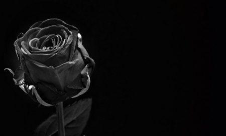   Faltas por motivo de falecimento de cônjuge, parente ou afim  